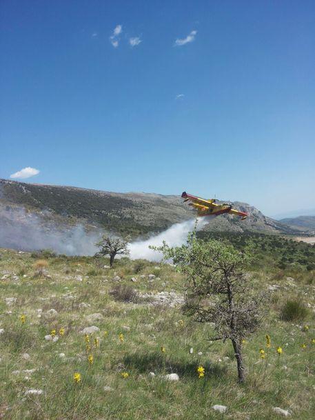 Primo incendio del 2015 nel Parco del Pollino