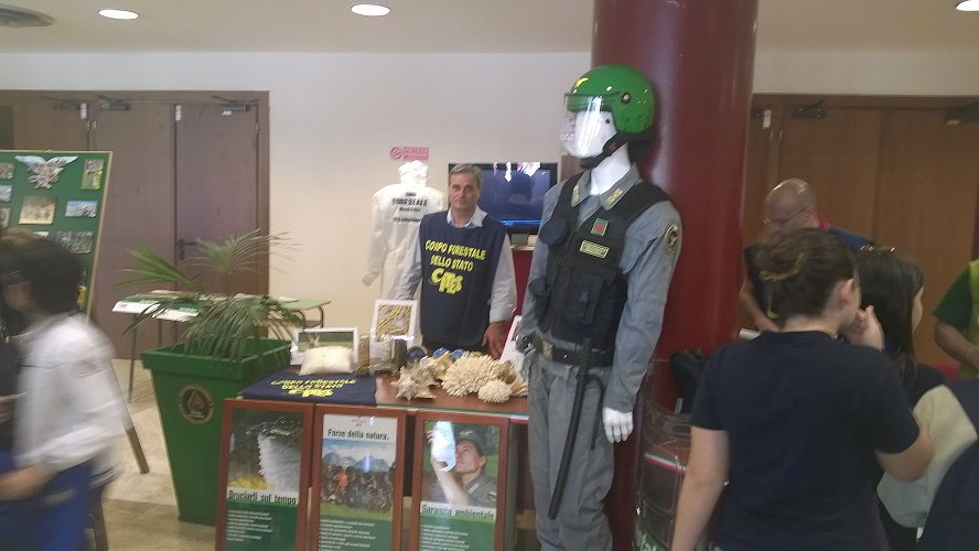 Reggio Civitas 5
