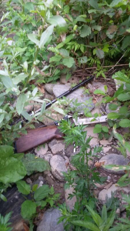 area del rinvenimento fucili Soveria