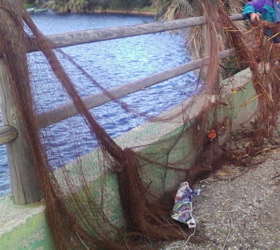 La rete da pesca