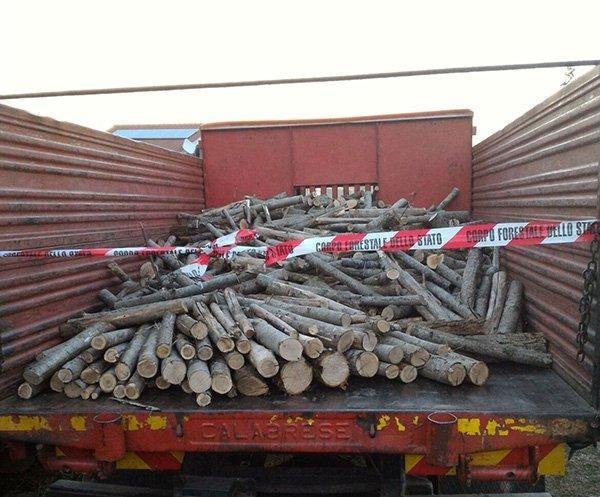 Furto di legna a Rota Greca