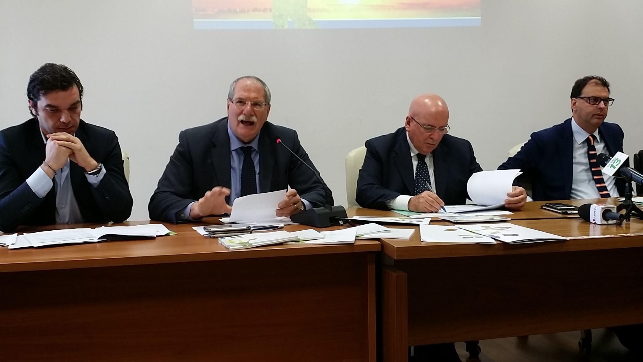 Psr Calabria bandi misure superficie
