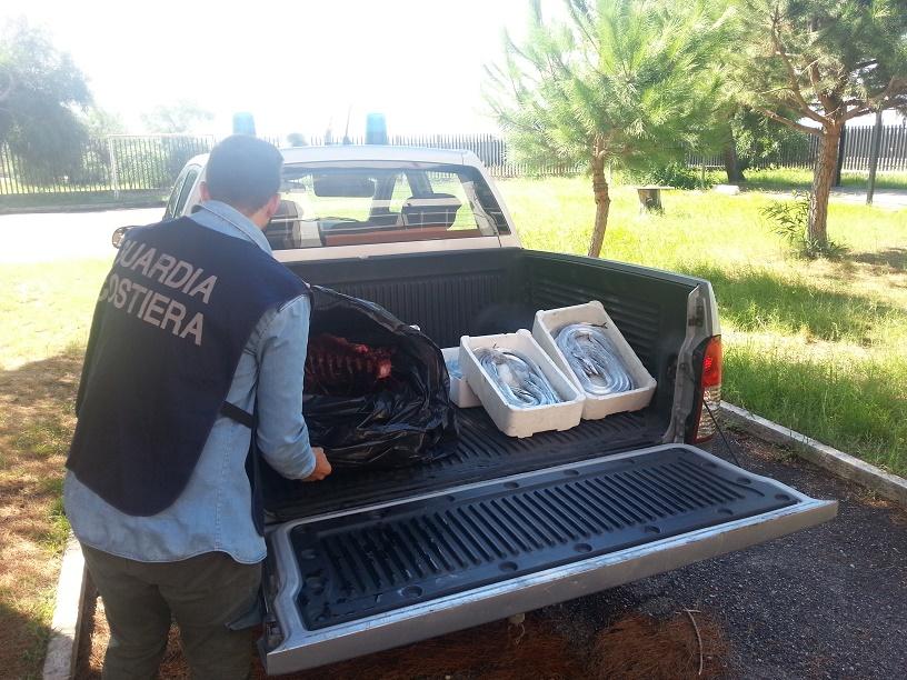 Gioia Tauro (RC) - Vendevano pesce violando la legge: sanzione per 1500 euro