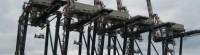 Porti: le gru dello scalo di Gioia Tauro