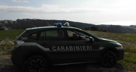 Catanzaro, sgominata gang furti auto: 20 arresti