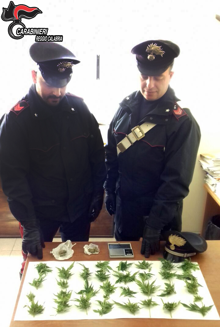 Gli trovano piante di marijuana in casa: in manette 27enne reggino