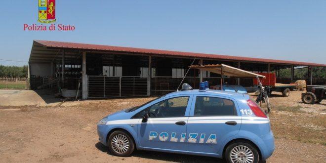 'Ndrangheta, tribunale dispone confisca dei beni alla cosca Crea