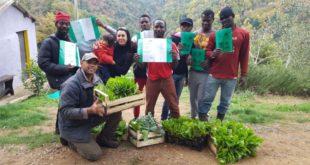 La cooperativa Stella del Sud e il progetto di integrazione Green Hero