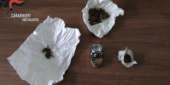 Pizzo, marijuana nel cortile dell'istituto nautico