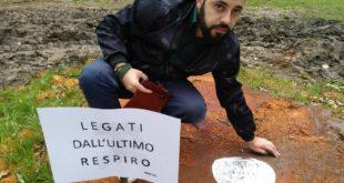 Serra S. Bruno, taglio dei platani secolari: incursione di Angelo Ventimiglia