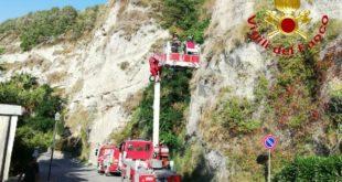 Vigili del fuoco recuperano due volatili a Tropea
